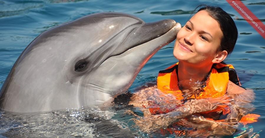 плавание с дельфинами мармарис